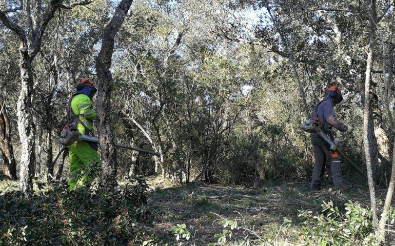 Operaris netejant una parcel·la de la urbanització Can Carbonell de Caldes de Malavella. Foto: laselva360