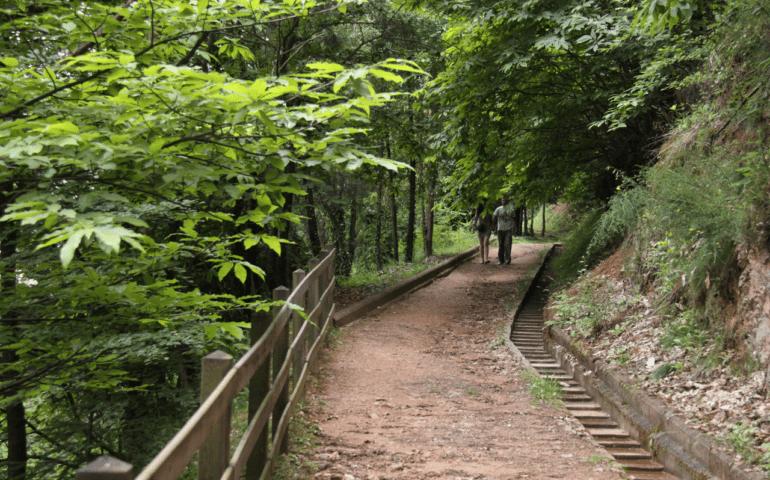 Un tram del Camí de Sant Jaume. Foto: Associació de Turisme La Selva, Comarca de l'Aigua