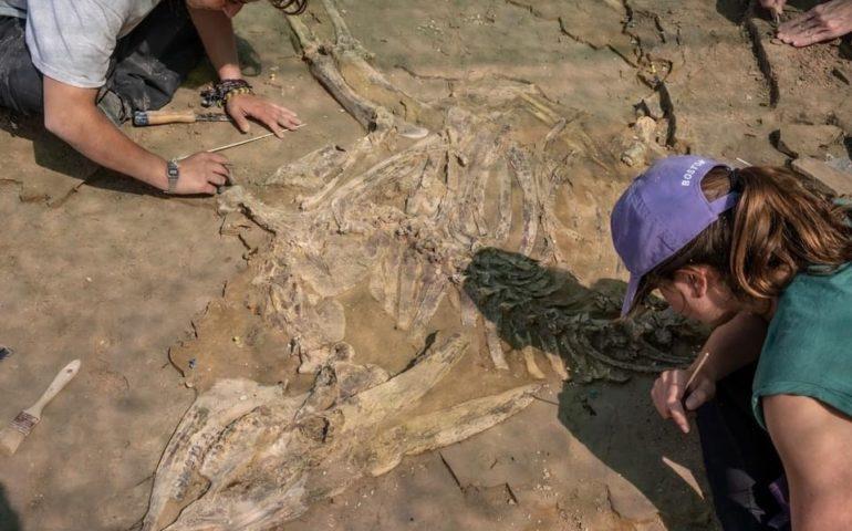 Excavació al Camp dels Ninots de Caldes de Malavella