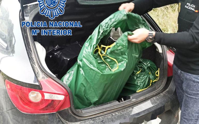Un agent del CNP amb algunes de les bosses que contenien els cabdells de marihuana. Foto: cedida a l'ACN pel CNP