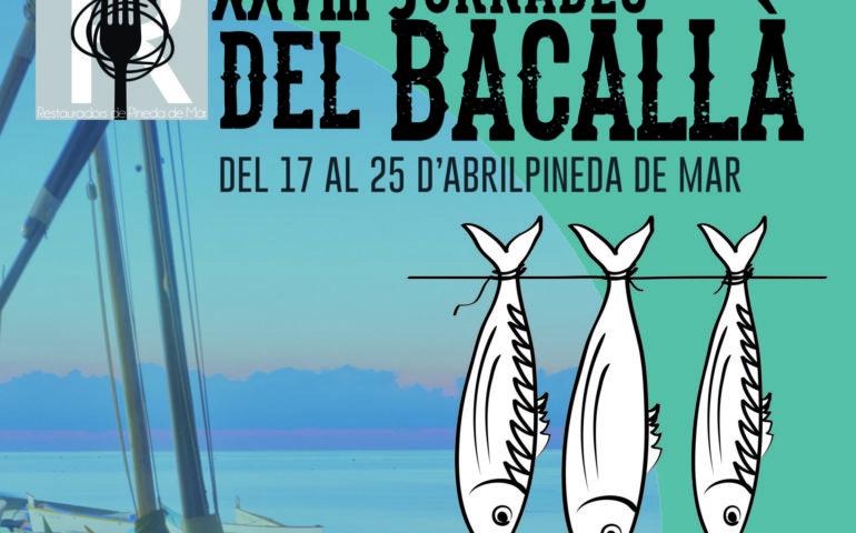 XVII Jornades del Bacallà de Pineda de Mar. Foto: Aj. Pineda