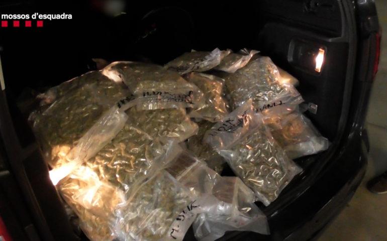 Bosses de droga trobades amagades al maleter