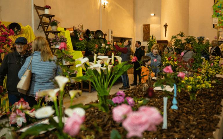 Mercat de les Herbes i Concurs-Exposició de Flors. Foto: David Rueda - Aj. Santa Coloma